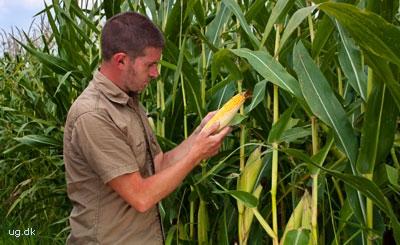 foto af agronom