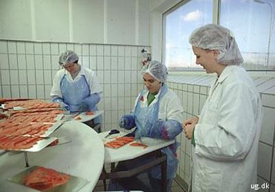 foto af fiskeriteknolog