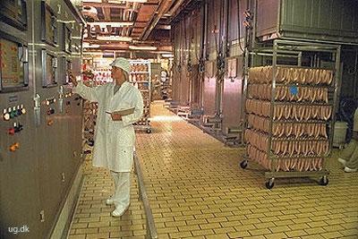 foto af kødindustriingeniør