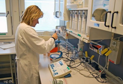 Birgitte arbejder med at forbedre medicinen til personer med sukkersyge.