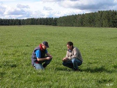 oto af landbrugskonsulent og landmand