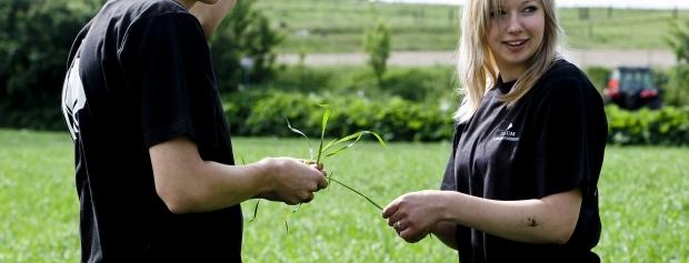 amu i planteproduktion i landbruget