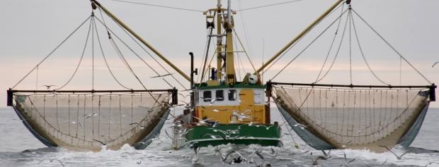 amu for erhvervsfiskere