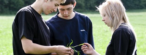 Kurser på landbrugsskoler