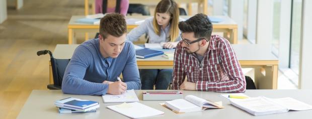 bacheloruddannelse i Business Administration and Sociology