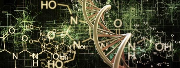 kandidatuddannelse i Biomedicinsk informatik