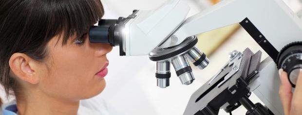 kandidatuddannelse i Medicinalbiologi