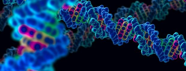 bacheloruddannelse i Molekylærbiologi