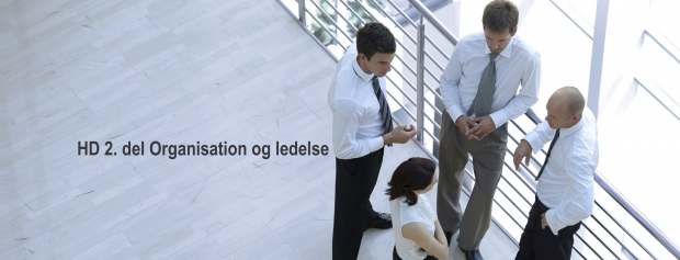 HD 2. del, organisation og ledelse
