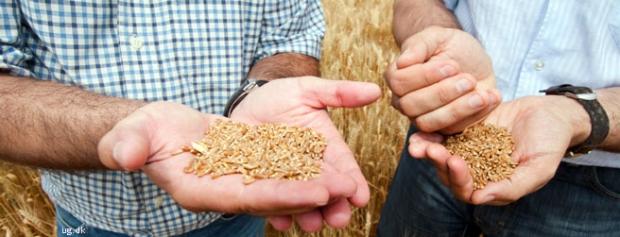 Foto af Landbrugskonsulent