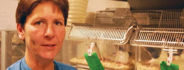 interview med dyretekniker på medicinalfabrik