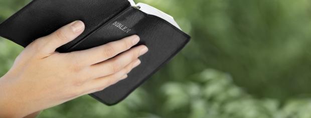 professionsbacheloruddannelsen i kristendom, kultur og kommunikation