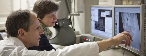 uddannelsen til diplomingeniør i sundhedsteknologi